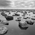 Forever Rocks by Svetlana Sewell