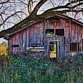 Forgotten Barn by Garry Gay