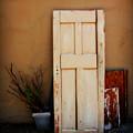 Forgotten Door by Perry Webster
