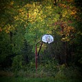 Forgotten Hoop by Michael L Kimble
