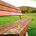 Forgotten Park Bench by Jennifer Addington