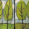 Four Seasons Tree Series by Tim Nyberg
