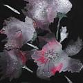 Frosty Flowers by Carol Ellis