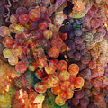 Fruit Of The Vine by Barbara Berney