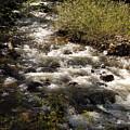 Galena Creek by Dan Whittemore
