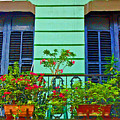 Garden Balcony by Debbi Granruth
