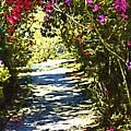 Garden by Donna Bentley