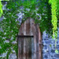 Garden Gate At The Highlands by Bill Cannon
