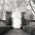 Garden Gate by Michael Hudson