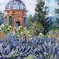 Garden Profusion - Lavendar by L Diane Johnson