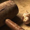 Garlic by Christo Christov