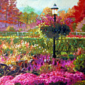 Gas Light In The Garden by John Lautermilch