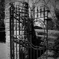 Gate In Macroom Ireland by Teresa Mucha