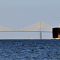 Gateway To Tampa Bay by David Lee Thompson