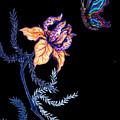 Gathering Nectar On Black by Rae Chichilnitsky