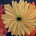 Gerbera Daisies by Lisa Gabrius