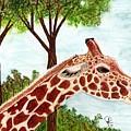 Giraffe Profile by Doug Hiser