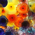 Glass Flowers by Erin Rosenblum