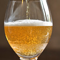 Glass Of Lager by Louise Heusinkveld