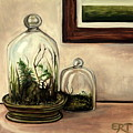 Glass Terrariums by Elizabeth Robinette Tyndall