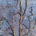 Gnarly Old Tree by Horacio Prada
