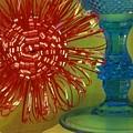 Goblet Bow by Tamarra Tamarra