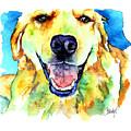 Golden Retriever Portrait by Christy  Freeman