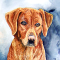 Golden Retriever Sara by JoLyn Holladay