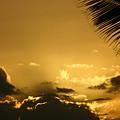Golden Sunset by Doug Johnson