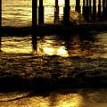 Golden Surf by Linda Shafer