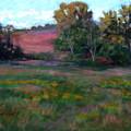 Goldenrod Afternoon by Julie Mayser