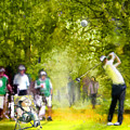 Golf Trophee Hassan II In Royal Golf Dar Es Salam Morocco 03 by Miki De Goodaboom