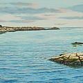 Goose Neck Cove by Bruce Dumas