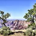 Grand Canyon 2270 by Sharon Broucek