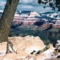 Grand Canyon Winter by Lynn Bawden