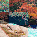 Granite Outcrop And Fall Leaves Aep3 by Lyle Crump