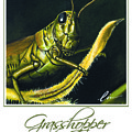 Grasshopper Poster by Cindy D Chinn