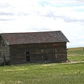 Grassland Farm by Margaret Fortunato