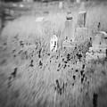 Graveyard 6793 by Timothy Bischoff