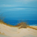 Grayton Beach Dunes by Nancy Nuce