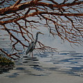 Great Blue Heron by Bill Dinkins