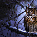 Great Horned by Ron Jones