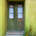 Green House by Gabriela Insuratelu