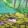 Green Rocks by D T LaVercombe