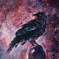 Grim And Ancient Raven by Sandy Applegate