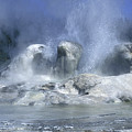 Grotto Geyser - Yellowstone National Park by Sandra Bronstein