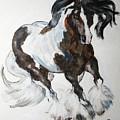 Gypsy Vanner by BJ Redmond