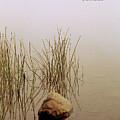 Haiku Poster by Roger Soule