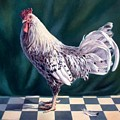 Hamburger Rooster by Hans Droog