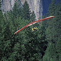 Hang Glider In Yosemite by Stan and Anne Foster